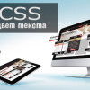 Цвет текста CSS картинка
