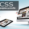 шрифты для веб