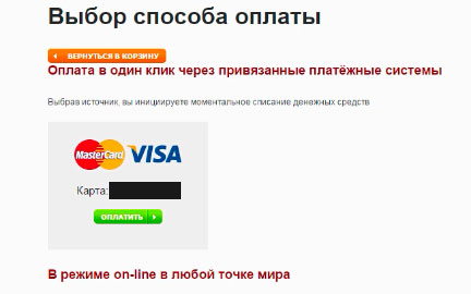 Способ-оплаты-доменного-имени
