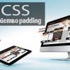 css-свойство-padding